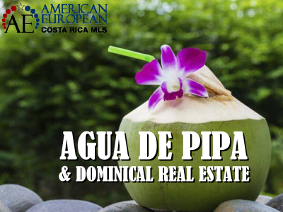 Agua de Pipa and Dominical real estate