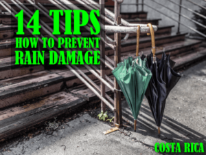 14 Tips on how to prevent rain damage to your property