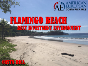 Flamingo beach has best investment environment