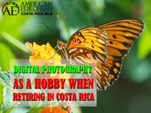 Retire in Costa Rica and pick up digital photography as a hobby