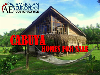 Nicoya Peninsula Real Estate Costa Rica