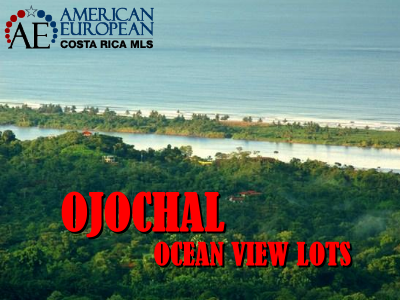 Ojochal real estate
