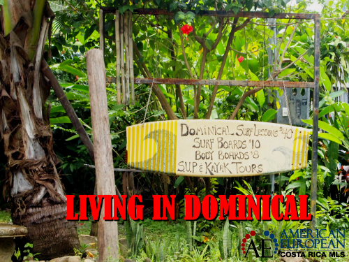 Dominical real estate