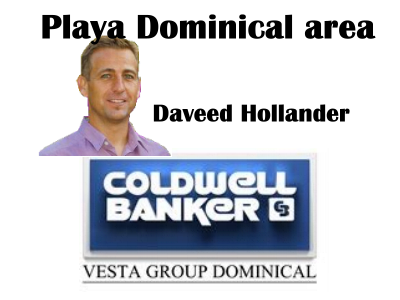 Daveed Hollander, AE affiliate for Dominical real estate