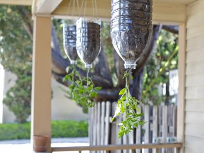 Use inverted hanging planters to grow