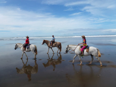 Enjoy horseback riding in Esterillos