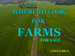 Where to look for farms in Costa Rica