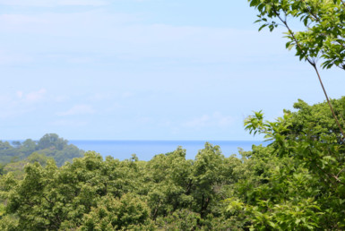 1.45 Acre Stunning Uvita Ocean View Lot Tierra Verde for sale.