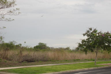 19 Acres mixed use commercial land for sale in Liberia area - ready to build