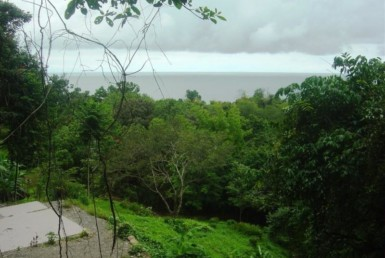 4 Acre Dominical multi level building lot with several terraces