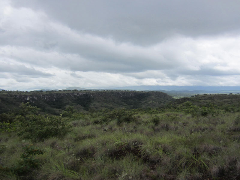 Incredible land deal 40 hectares in Liberia area - create a unique destination