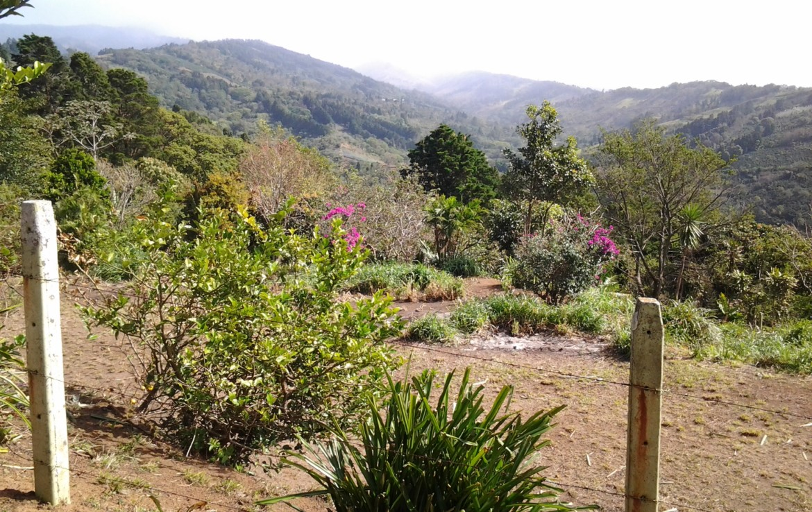 Best Building Lot in Naranjo with Sweeping Views of the Central Valley