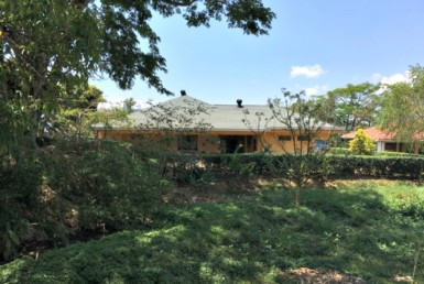 Los Reyes new on market single story 4 BR quality home with gardens