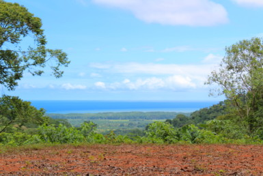 Portalon Ocean View building lot surrounded by Jungle