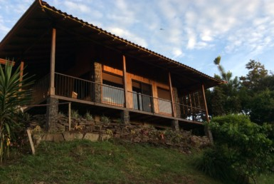 Paradisiacal 3 Acre Farm with cabin