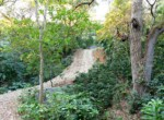 Atenas-Jungle-House-with-over-10-acres-land-to-develop-–-Rural-Nature-and-Stunning-Views-3