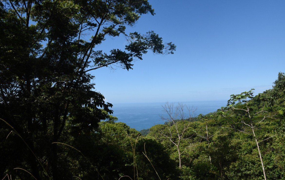 Costa Verde Dominical Building Lot with Ocean View