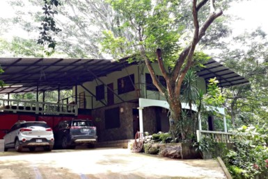 Furnished Atenas Jungle House with modern amenities pets allowed
