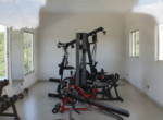 MSa2 Exercise equipment