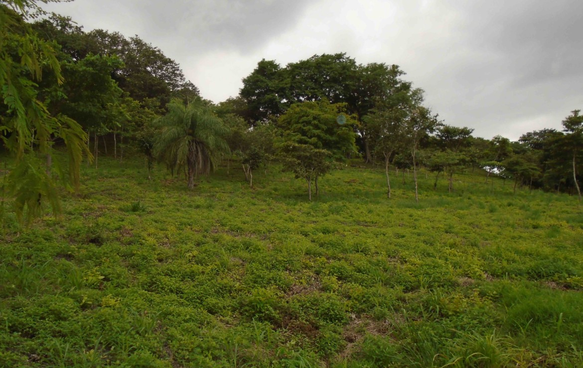 Bagaces 9 Acres in Ideal Location, Cool Climate and Views
