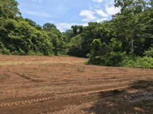San Juanillo Nature Reserve River and Forest Building Lot