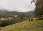 Wow Opportunity Over 2 Acre Escazu Estate Home Small Farm