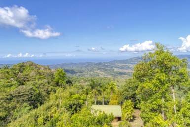 49 Acres Tinamastes Rainforest property 3 BR Home and Botanical Garden