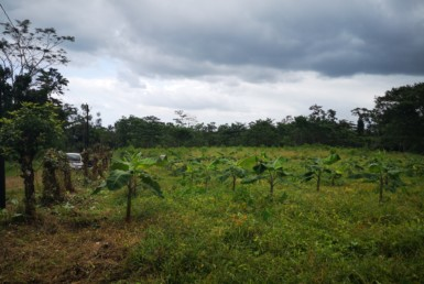 Almost 6 Acre Chachagua Residential Lot near La Fortuna