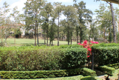 On the Cariari Golf Course 5 BR home Large Covered Terrace