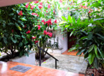 Atenas Solar Home with Guest House-19