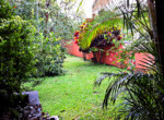 Atenas Solar Home with Guest House-24