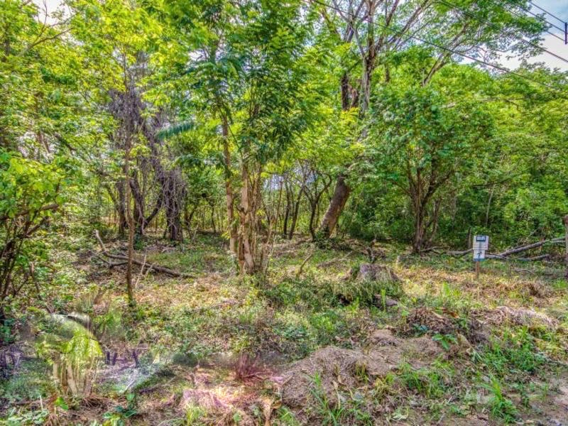 Flat wooded Nosara building lot near Del Mar Academy
