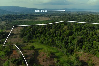 Only $99K Cheap 66 Acres Osa Peninsula Foreclosed Property