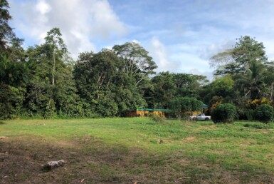 Flat 5000 m2 Home Site next to Cahuita National Park
