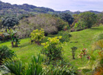 Atenas 2BR View Plantation Home on almost 5 Acre Flat Land-17