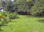 Atenas 2BR View Plantation Home on almost 5 Acre Flat Land-23