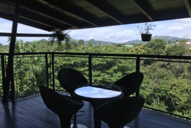 Furnished 2 BR View Rental walking distance to Sarchi with a Forest area
