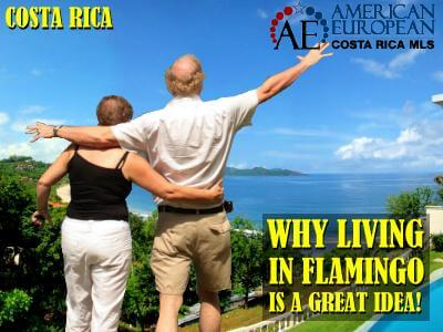 Why Living in Flamingo is a Great Idea!