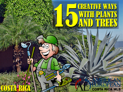 15 Creative Ways with Plants and Trees in Costa Rica