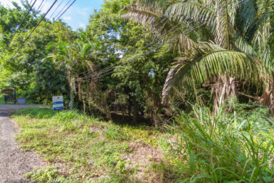Playa Guiones H Section Building Lot