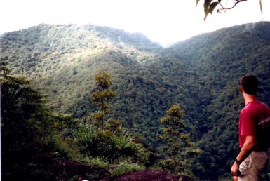 Exceptional 198 Acres of Protected Primary Forest in Dota