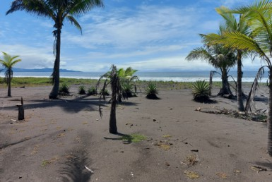 Bargain Magnificent Central Pacific 6597 m2 Titled Beachfront Property in Bajamar